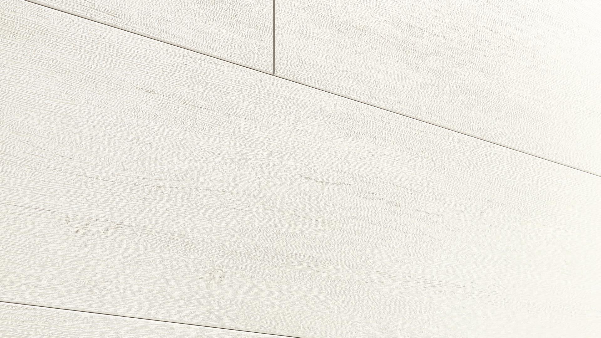 Dekorpaneele MeisterPaneele. terra DP 250 White Pine 4088