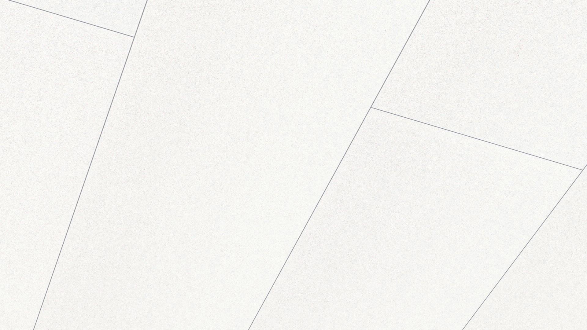 Dekorpaneele Terra DP 250 Uni creme 159
