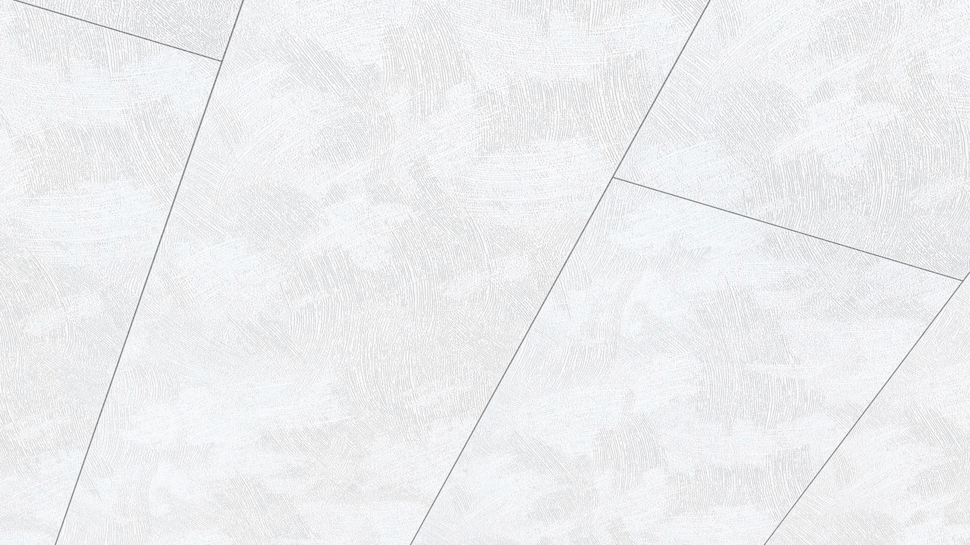 Lambris décor Terra DP 250 Blanc Padena 153