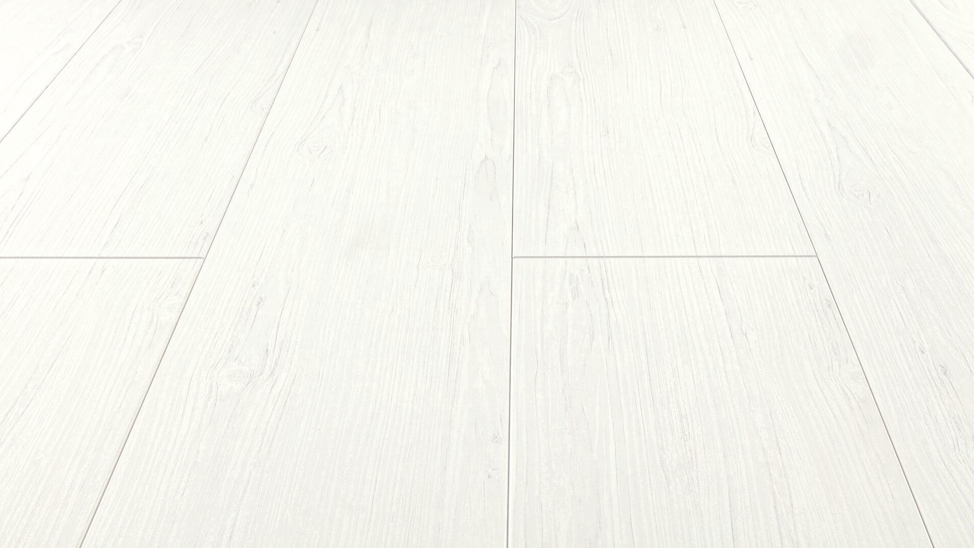 Decorative panels Tertio 250 Arctic white pine 4099