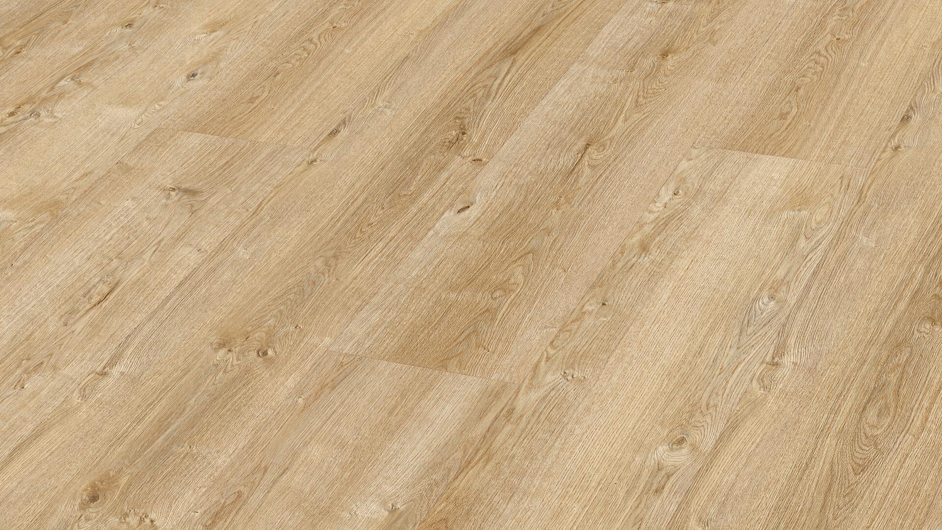 Laminate flooring MeisterDesign. laminate LL 250 Light farm oak 6831