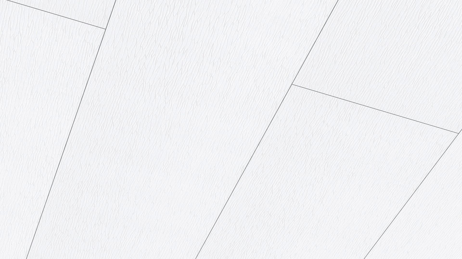 Lambris décor Terra DP 250 Ondulé blanc 4061