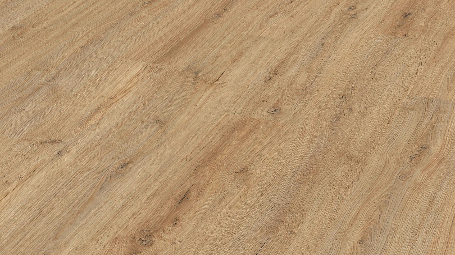 Laminate flooring MeisterDesign. laminate LC 150 Nova oak 6413