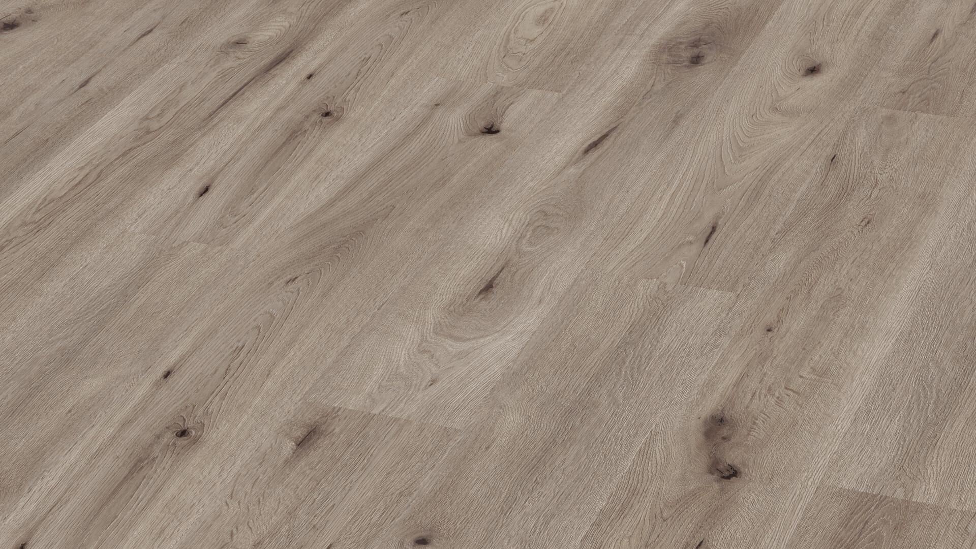 Laminate flooring MeisterDesign. laminate LC 55 S Greige field oak 6854