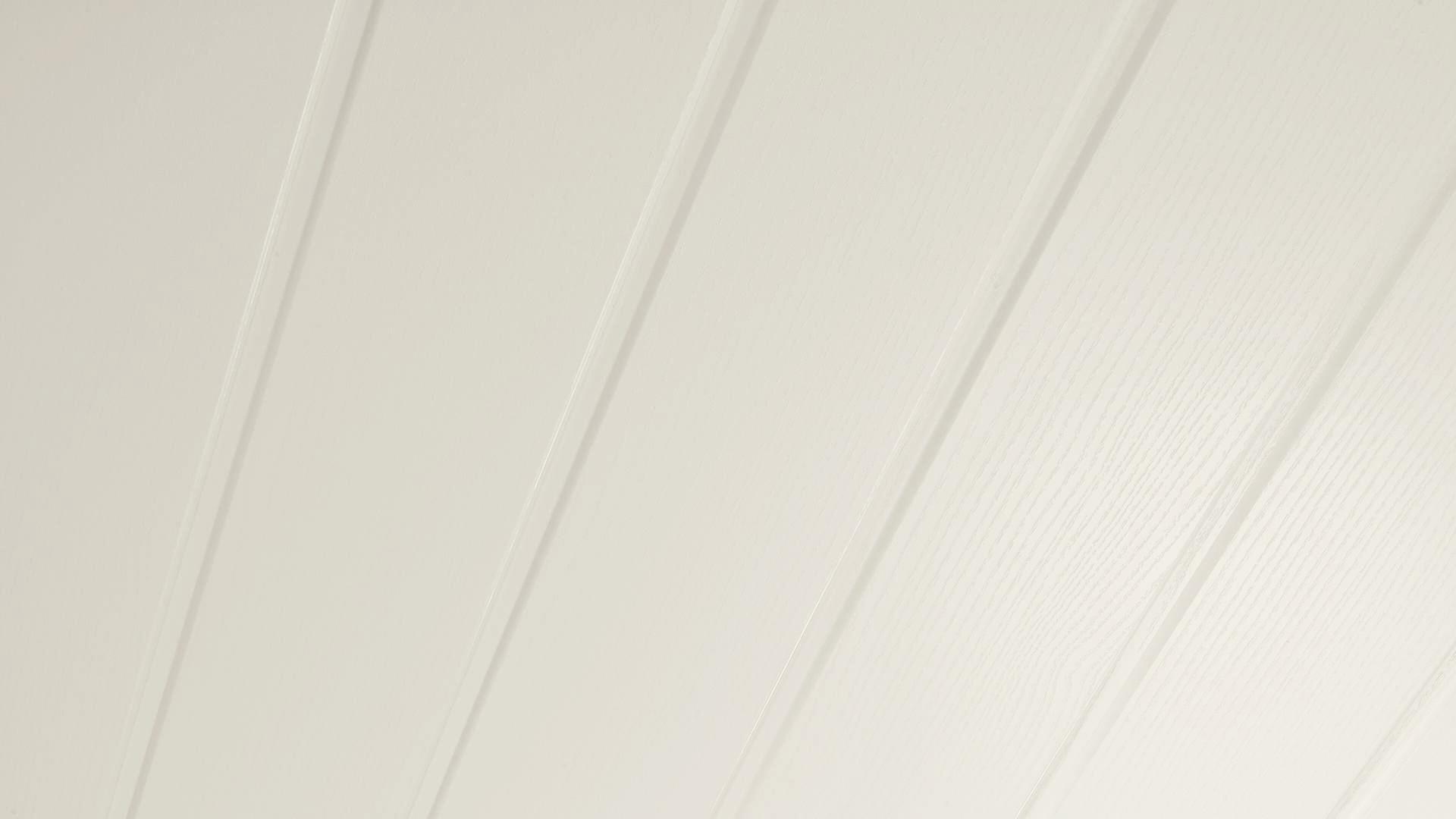 Dekorpaneele Terra DP 150 Classic-Weiß 087