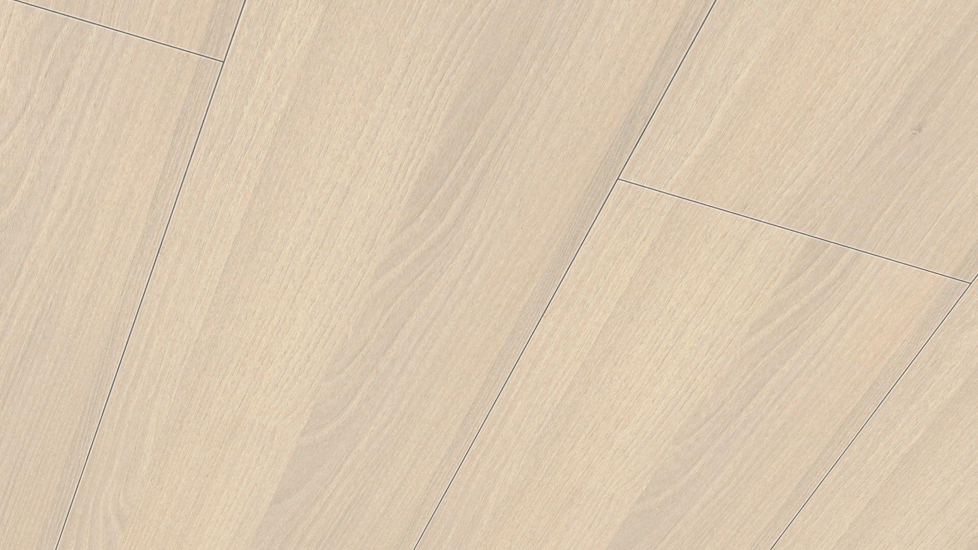 Dekorpaneele Terra DP 250 Akazie hell 4012