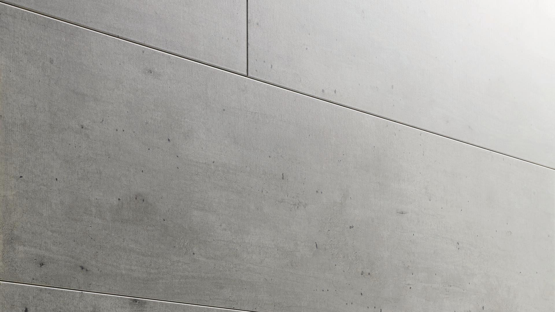 Paneles decorativos MeisterPanels. bocado DP 250 Hormigón 4045