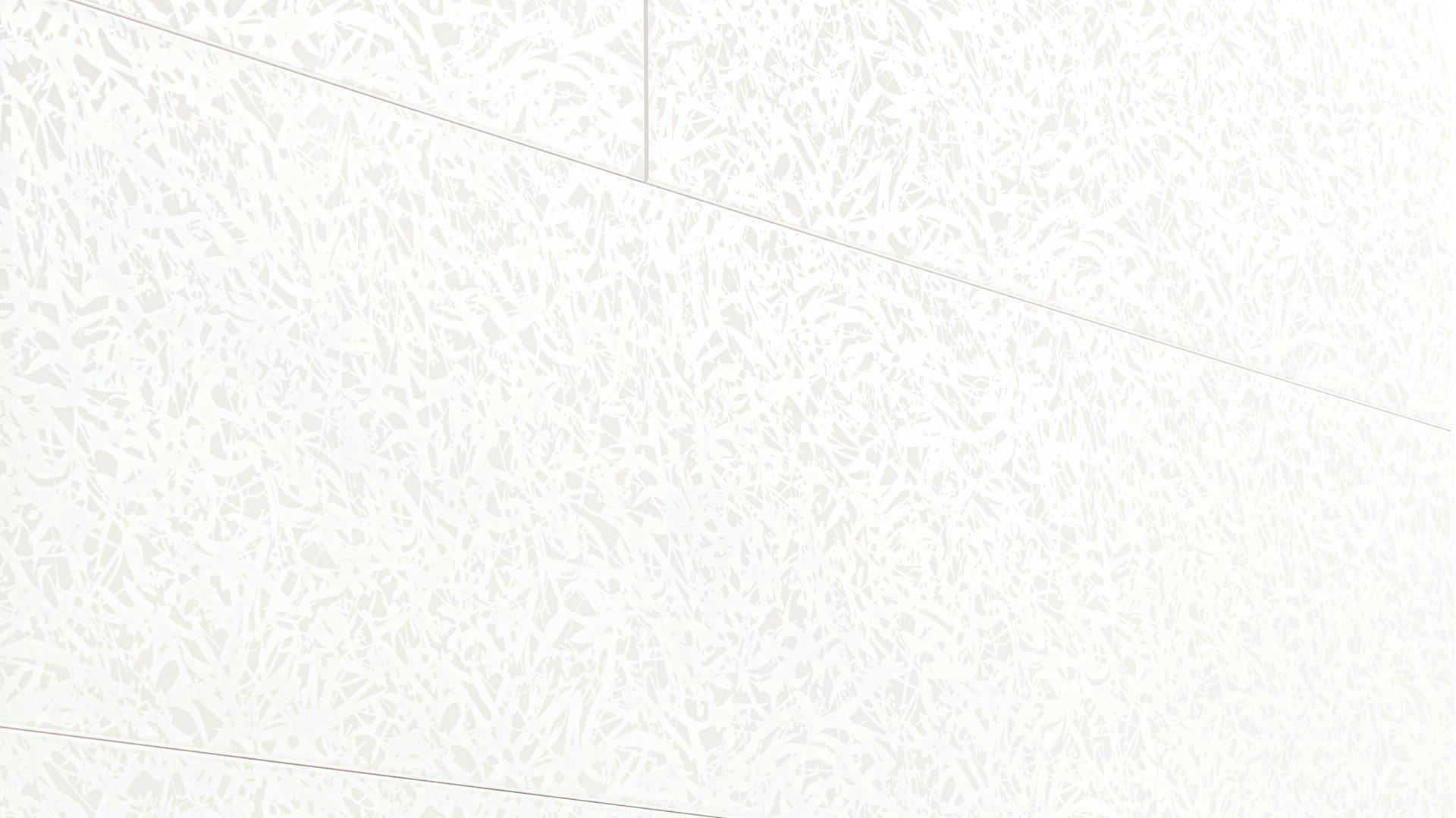 Dekorpaneele MeisterPaneele. terra DP 250 Duo Gloss White 4089