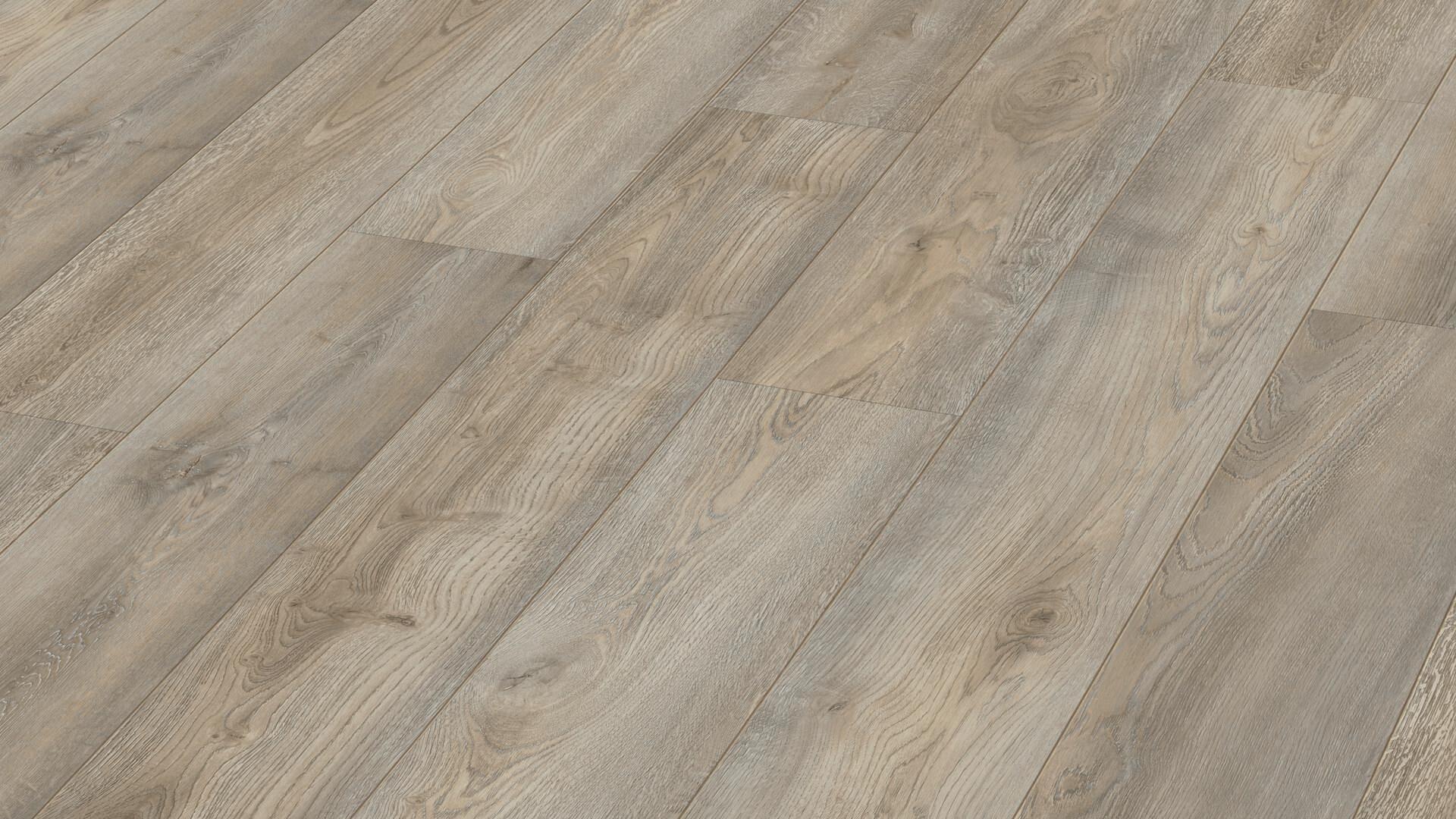 Laminate flooring MeisterDesign. laminate LD 250 Grey wild oak 6977