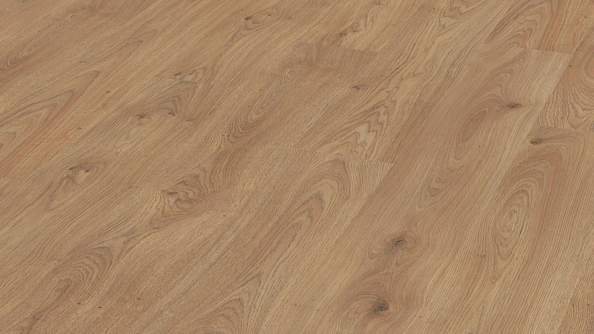 Laminate flooring MeisterDesign. laminate LC 150 Trentino oak 6393