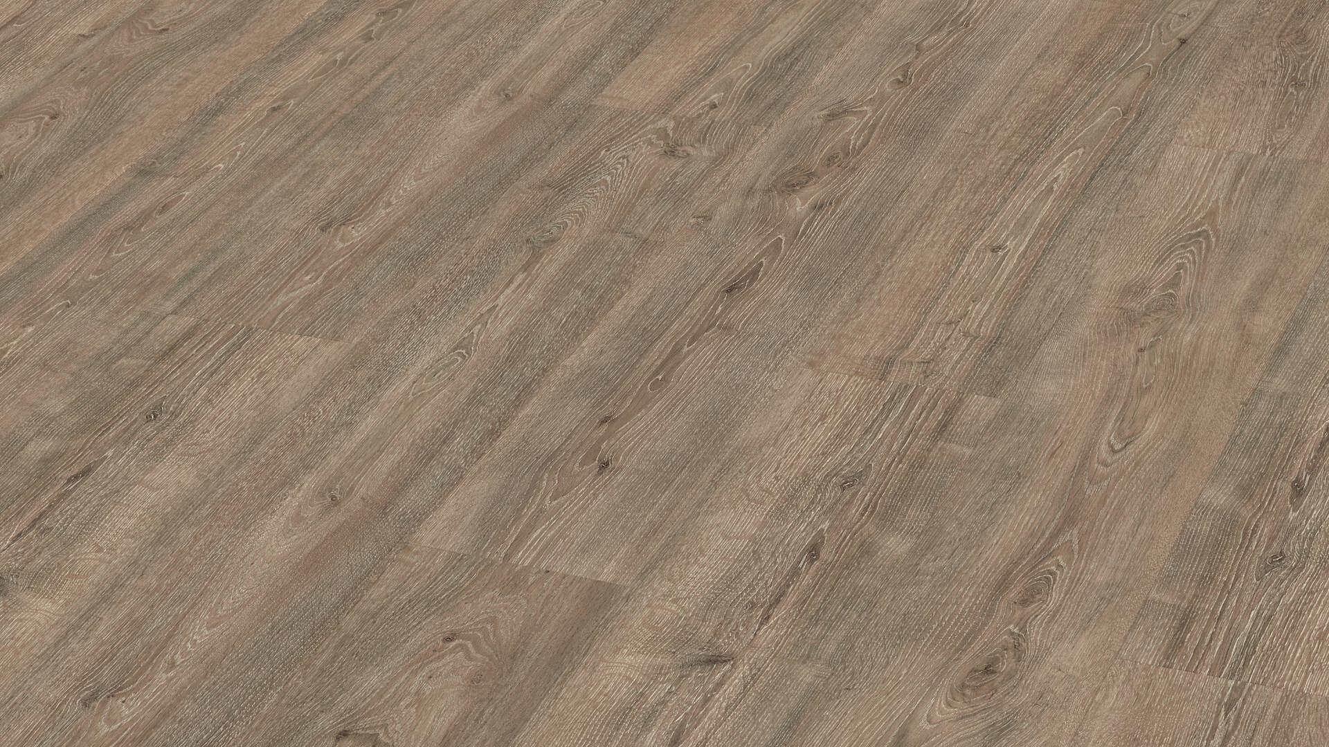 Laminate flooring MeisterDesign. laminate LD 55 S Louisiana oak 6861
