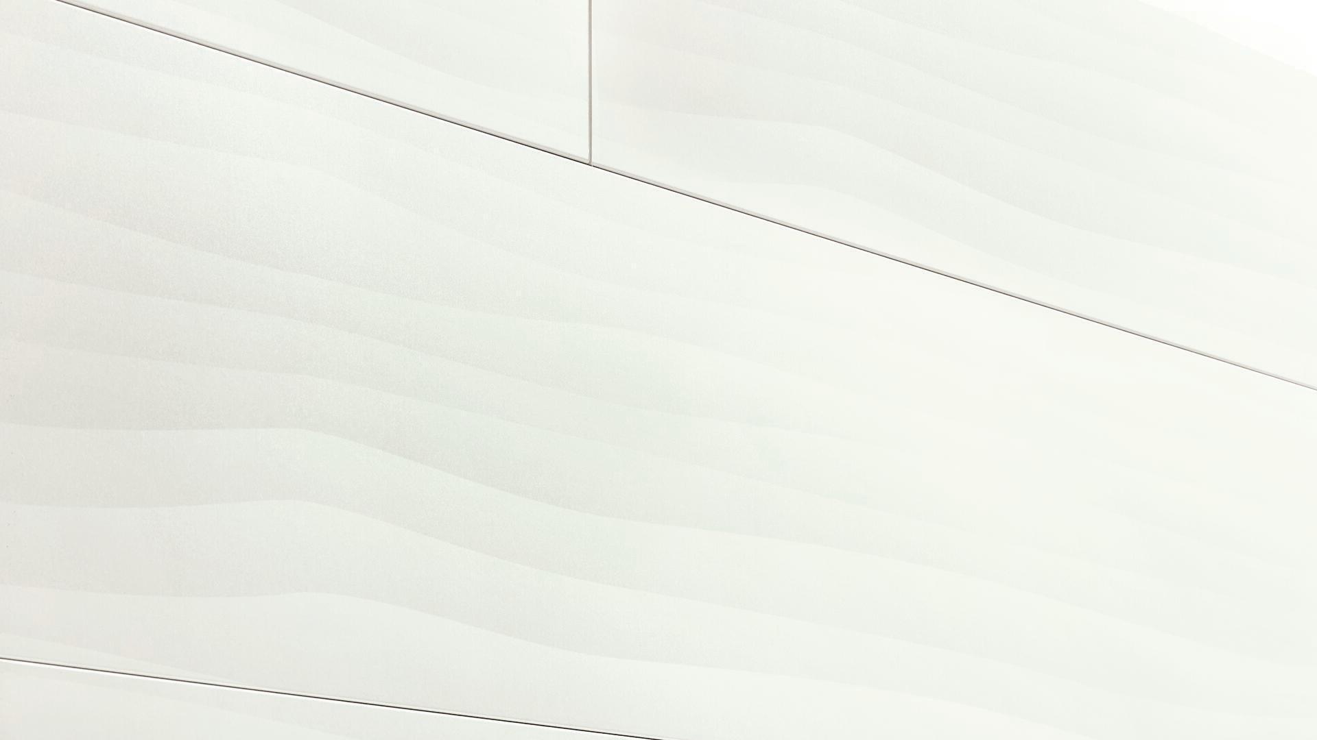 Decorative panels MeisterPanels. terra DP 250 White vision 4203