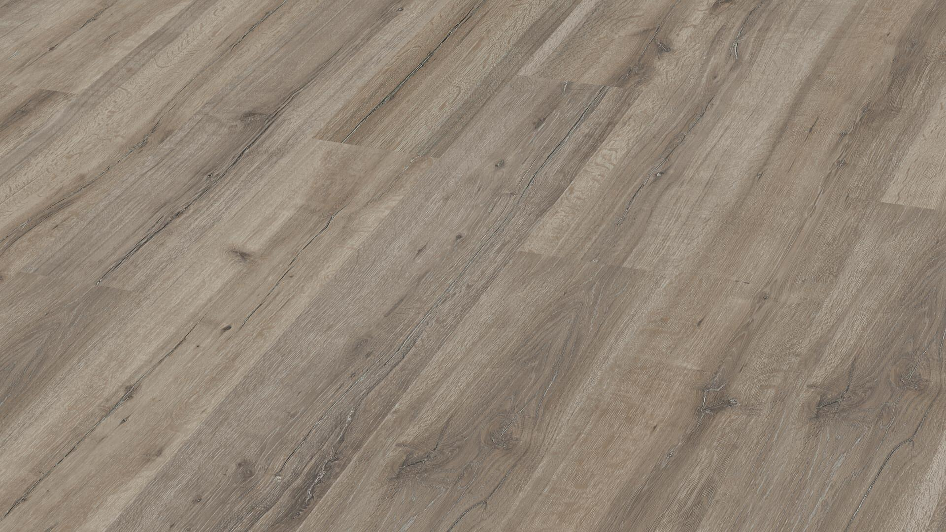 Laminaatvloer MeisterDesign. laminate LC 55 Grey Oak 6671