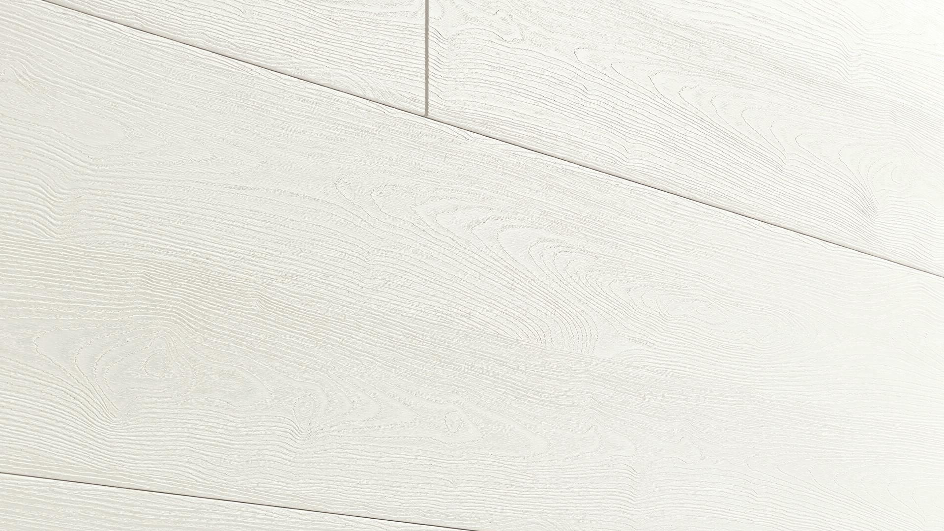Decorative panels MeisterPanels. terra DP 250 Grey mountain wood 4204