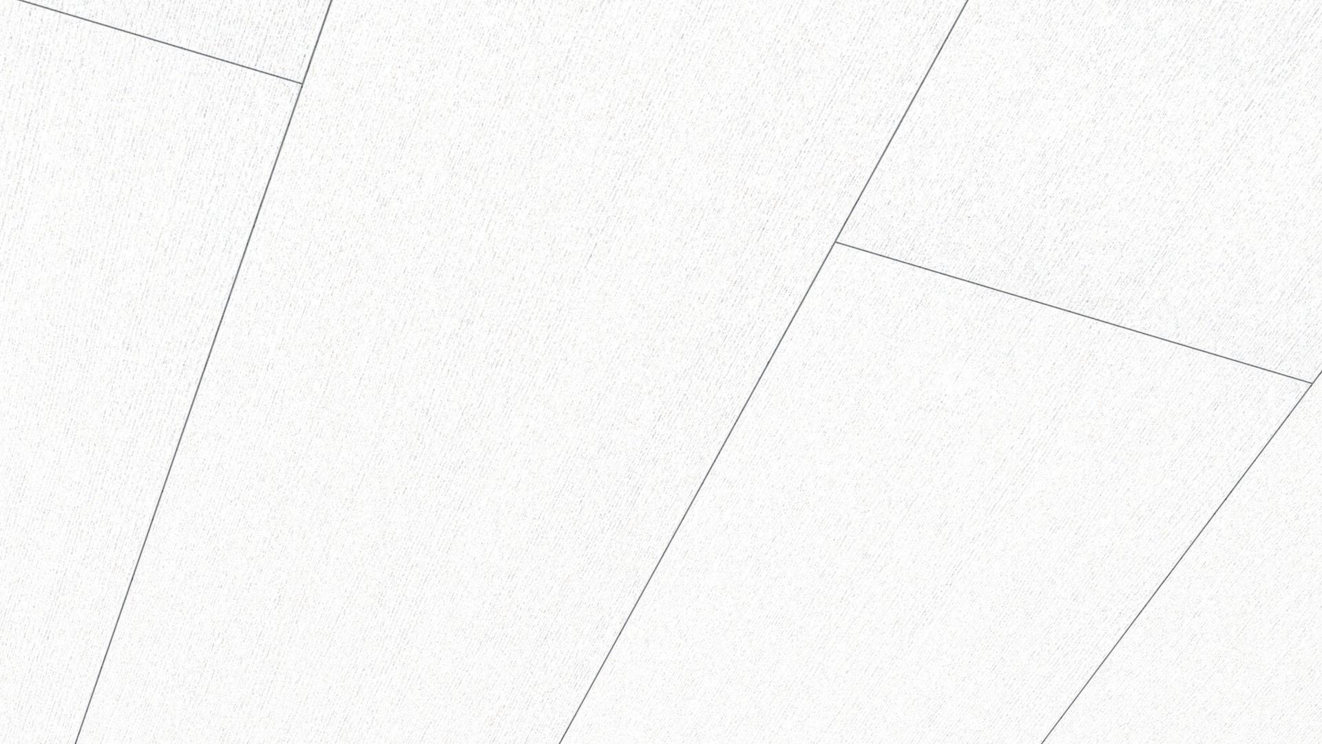 Paneles decorativos Terra DP 250 Fineline blanco 4017