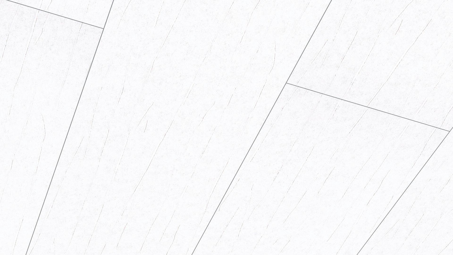 Dekorpaneele Terra DP 250 Crush weiß 4065
