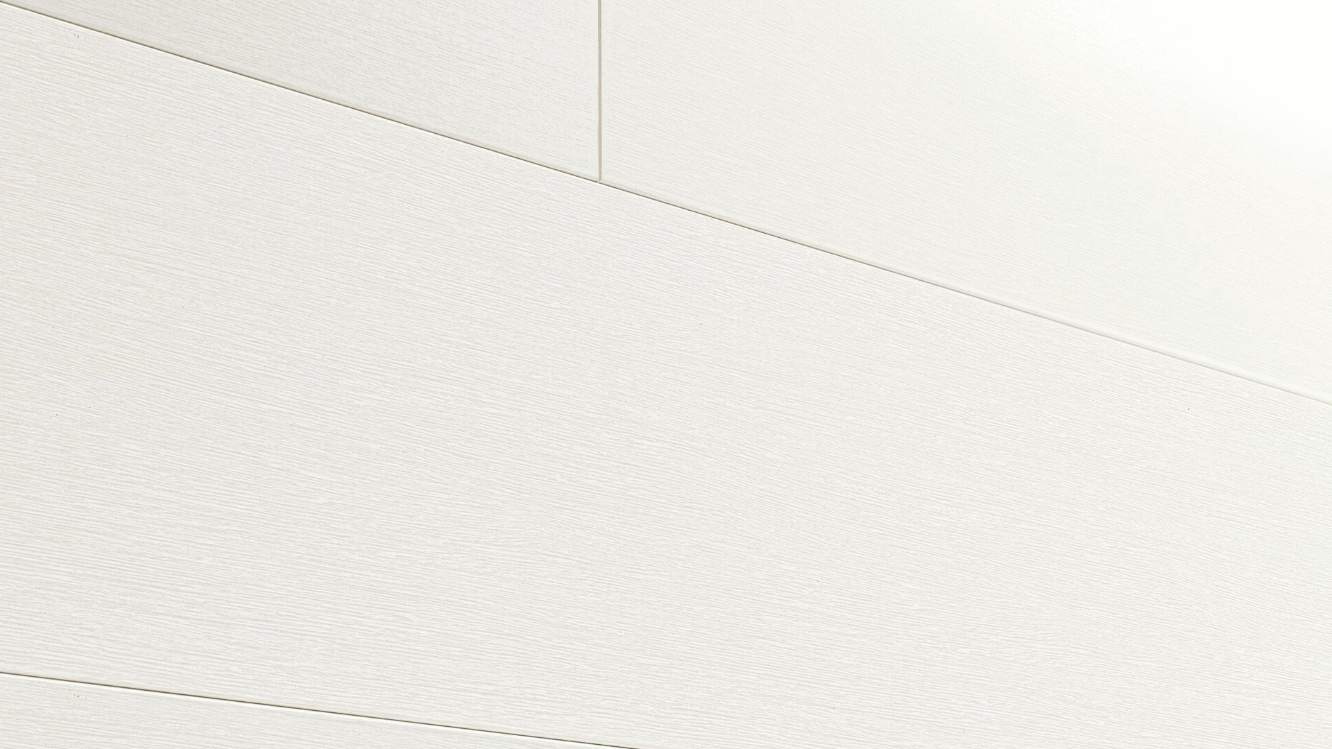 Decorative panels MeisterPanels. bocado DP 250 Fineline white 4029