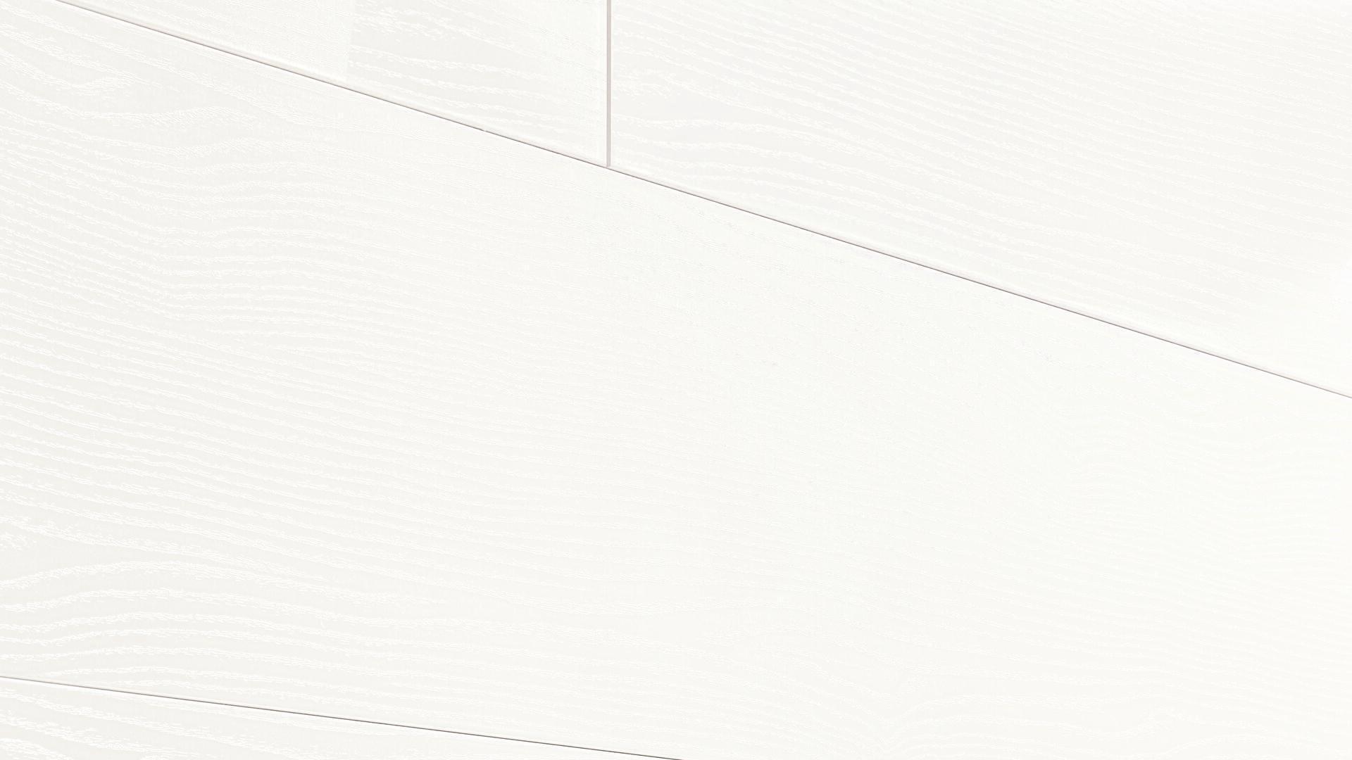 Decorative panels MeisterPanels. terra DP 200 Classic white 087